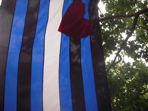 Schwarz zu blau (Peter Fox)