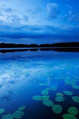 summer blue(s) (flowerpics09) Tags: blue light summer sky lake nature water see evening licht sommer natur dream himmel h2o silence spiegelung horizont reflektion mecklenburg blauestunde yellowpondlily d700
