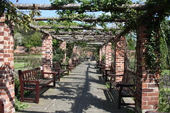 Waiting for the Wisteria (Anita K Firth) Tags: park plants flower brick gardens official vines shadows walkway grapes wisteria thornes supports formalgardens