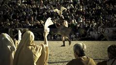 Goodbye! (www.giorgiopuddu.com) Tags: people roma gara vittoria romani folla gladio esibizione fazzoletto gladiatori