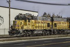 UP Y561 (smbrooks_2000) Tags: california railroad up train rail trains rails unionpacific weathered locomotive railroads escalon gp15
