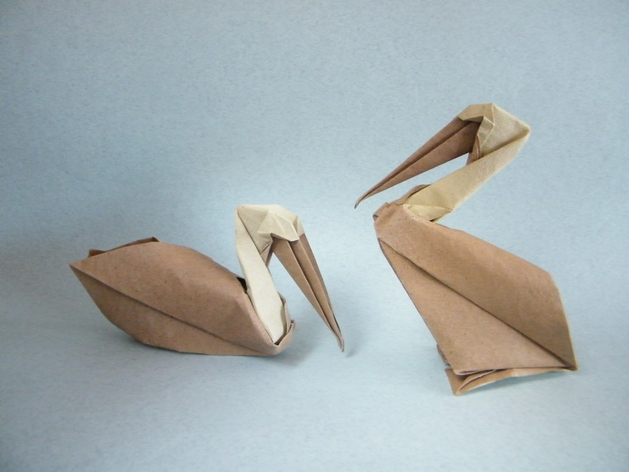 The Worlds Most Recently Posted Photos Of Origami And Pelican
