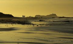 Land Of Gold (ajp~) Tags: longexposure light sunset beach silhouette canon island gold coast scotland seaside sand waves dunes tide coastline northberwick 6d eastlothian fidra