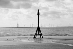 They Came From the Ocean (JamieHaugh) Tags: liverpool southport outdoor outdoors blackandwhite blackwhite monochrome beach sea seascape windfarm ocean
