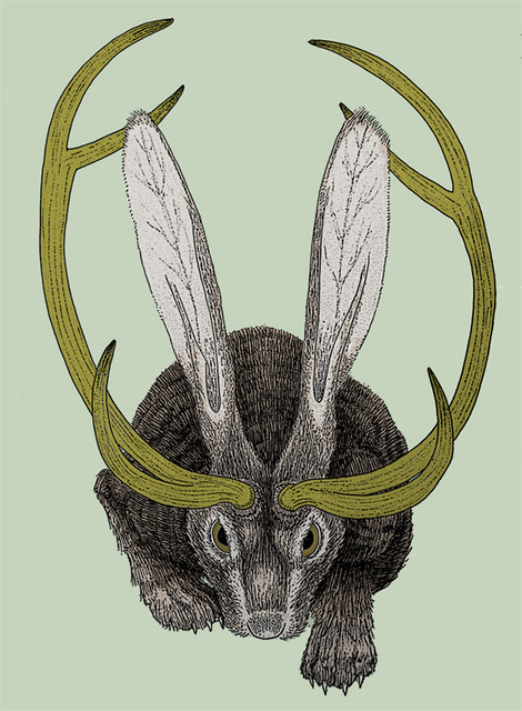 jackalope-finished