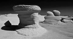 Borkum - Skulpturen am Strand (Pana53) Tags: strand und am sand die wind natur wolken eldorado insel makro weite horizont pur borkum sturm gebilde erholung spazieren skulpturen endlos fotografen geformt endlose landschaftsaufnahmen detailaufnahme schwarzweisfoto niederschlge pana53 borkumstadt gebilden sandflchen borkumstrand