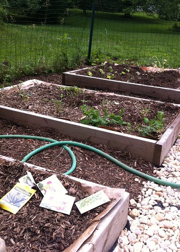 Planting the Garden!