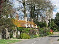 Oxfordshire Cottages (John Spooner) Tags: road church spring bush village cottage ivy lichen shrub phonebox