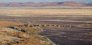 Namibia Luxury Photo Safari 8