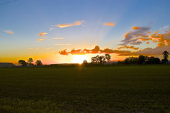 Staring at the Sun (M33_ Photography) Tags: sunset sun landscape nikon colours fields staring lowood d5100