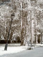 CRW_0351b (JFofonoff) Tags: graveyard rovaniemi infrared canong3 hautausmaa 720nm infrapuna
