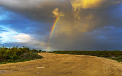 Forest Rainbow (nicklucas2) Tags: newforest nature landscape sunset milkham cloud rainbow road
