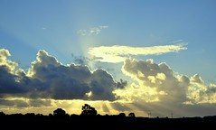 East Yorkshire sunrise (cdwpix) Tags: sunrise east yorkshire holderness humber autumn