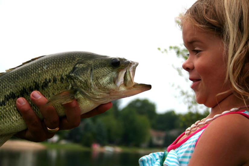 herfish