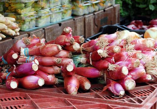 Torpedo onions