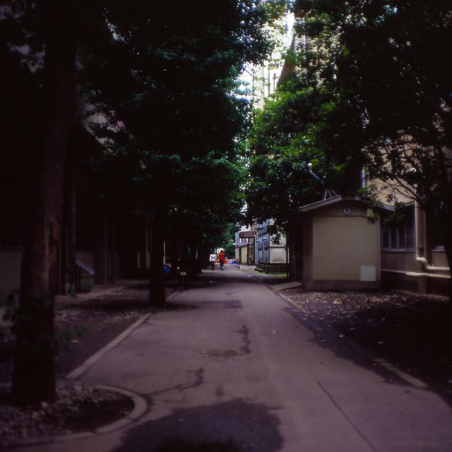 建物裏の通路