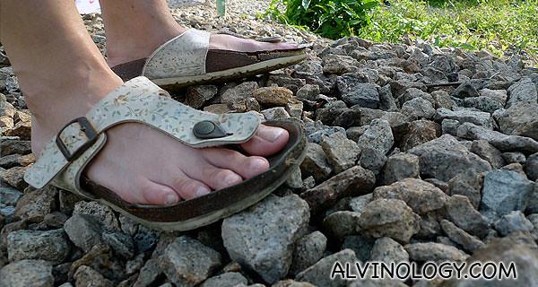 Walking along the pebbles track