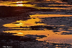 RIFLESSI D'ORO ROSSO FRA DESERTO E MARE      ------     REFLECTIONS  OF RED GOLD  BETWEEN THE DESERT AND T