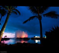 lago martiánez (- GD photography -) Tags: luz lago luces nikon fuente canarias palmeras lagos tenerife nocturna piscinas junio islas canaria puertodelacruz camaras 2011 d90