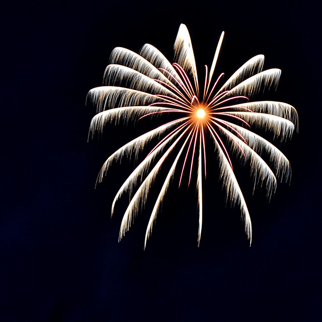 2011 Fireworks - 4