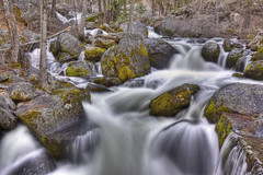 Alder Creek HDR (x-ray tech) Tags: park trip vacation mountain motion blur cold detail tree ice wet water beautiful rock set america forest photoshop canon relax flow eos leaf moss interestingness high nice interesting highway perfect stream long exposure branch dynamic mask streak god air tripod hill bracket peaceful hike fresh spray sharp clean drip explore trail filter national adobe level yosemite bubble 5d series melt curve capture polarizer range hdr bless 41 density unsharp markii neutral polarizing wawona photomatix cs5