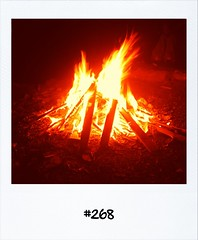 """#DailyPolaroid of 22-6-12 #268 • <a style=""""font-size:0.8em;"""" href=""""http://www.flickr.com/photos/47939785@N05/7434347206/"""" target=""""_blank"""">View on Flickr</a>"""