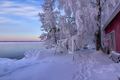 Cold Swing (MilaMai) Tags: pink trees winter sky lake snow cold ice water clouds barn suomi finland landscape frozen colorful pastel branches footprints frosty swing redhouse footsteps mntyharju frosts milamai