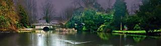 Pittville Lake  capturing the rain