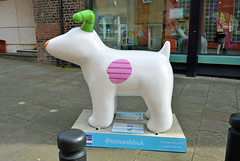 The-Snowdog-A-23-September-2016 (Steve Ellwood Whitley Bay) Tags: greatnorthsnowdogs thesnowdog ouseburn limestreet thesevenstories ellwood steveellwood