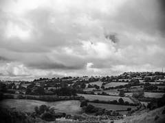 Normandy Fields (Jen Murray Photo) Tags: hill normandy france bw hedges landscape