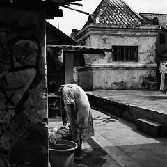 As Usual (Purple Field) Tags: rolleiflex t tlr carl zeiss tessar 75mm f35 canoscan8800f stphotographia ilford delta iso400 bw monochrom analog film 6x6 120 medium square yogyagakrta indonesia street alley walking