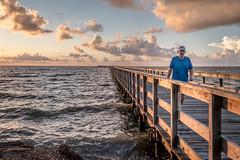 Morning Walk (Daniel Ray) Tags: animal bird galveston seabrook bay gully park pine sunrise