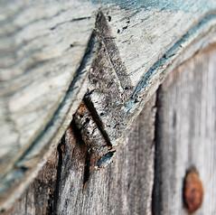 Porte bleue (R Garbett) Tags: france lozere cvennes texturesquared stgermaindecalberte leloumazelet