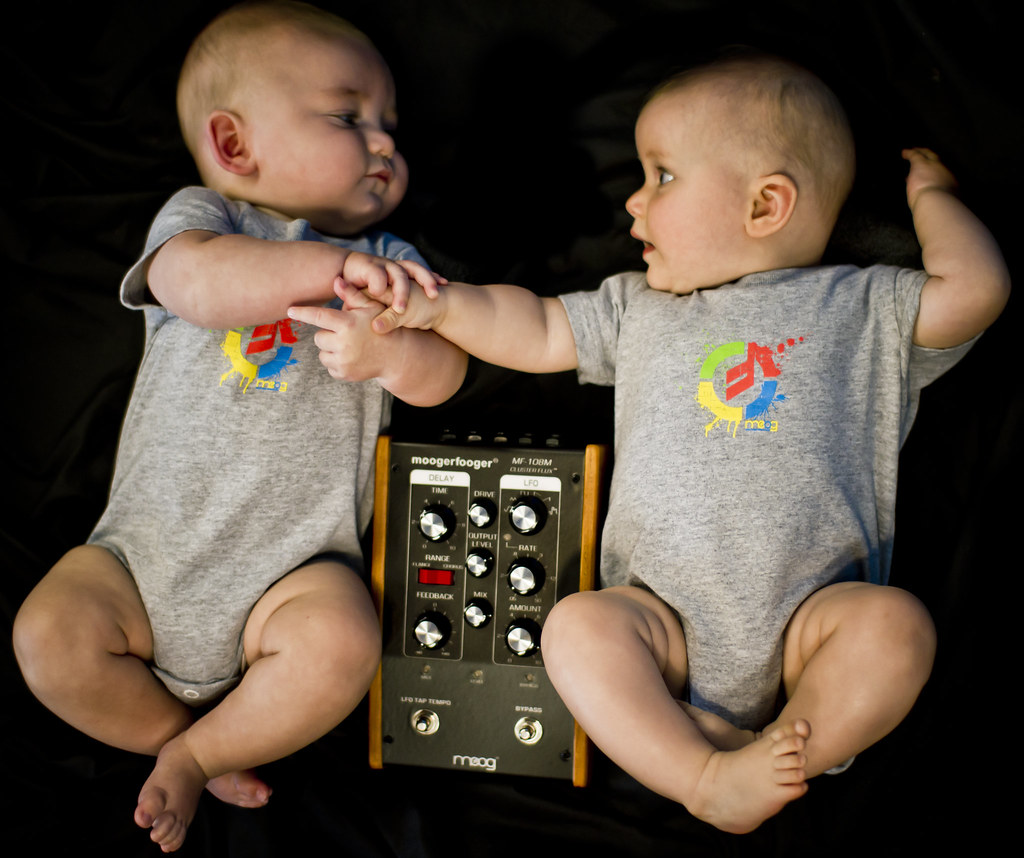 Moog Babies w/MF-108M Cluster Flux