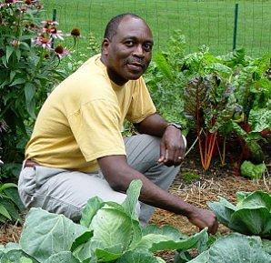Gardener from Harrisburg, PA, in the midst of his backyard home vegetable garden preparing produce donations for his local food bank. (Provided by an AmpleHarvest.org partner in Harrisburg, PA)
