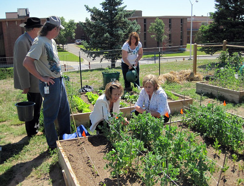 Jim Isgar, Rural Development Colorado State Director; Trudy Kareus, FSA State Executive Director; and Tammy Cook – FSA working in the garden