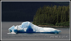 Icebergs in Tracy Arm (MunchYYC) Tags: ocean cruise blue ice nature water alaska canon boat ship floating disney 7d iceberg disneywonder sawyerglacier tracyarmfjord canon7d disneywondercruiseline