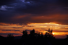 Sunset 4 (grizzly2670) Tags: sunset sun nature zeiss sonnenuntergang sony natur carl alpha sonne 65    1680