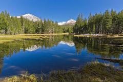 Pond along Tioga Pass Road (FrancoisBoucher) Tags: california trees snow mountains water forest pond unitedstates land yosemitenationalpark sierranevada mountdana tiogapass canonefs1022mmf3545usm tiogapassroad mountgibbs canon7d