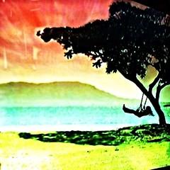 Tropical Swing #1 (aeleazer1(Busy,Off/On)!!!) Tags: camera blue light sky orange white black color green art colors yellow mobile upload puddle blog dc washington interestingness interesting day random air picture explore 99 dcist daytime splash vote tagging catchy soe api washdc facebook hypothetical iphone ipad givemefive metroarea vividimagination twitter colorpicture artdigital kartpostal shockofthenew infinitescroll iphone4 cmwd iphonecamera iphonepicture flickriver iphonography iphoneart awardtree struckbyrainbow trolledproud abokehoflight ipadography aeleazer1 ipadology aeleazer andreeleazer netartii