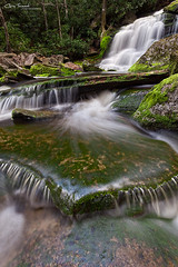 Elakala #2 ([Chris Tennant]) Tags: statepark 2 water rock moss spring wv westvirginia waterfalls cascade appalachia foreground tuckercounty elakala shaysrun potomachighlands 5dmkiii christennantphotography