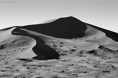 Desert Dunes (TARIQ-M 2) Tags: texture sahara landscape sand waves pattern desert ripple patterns dunes wave ripples riyadh saudiarabia بر الصحراء الرياض صحراء رمال رمل canonef70200mmf4lusm طعس كانون المملكةالعربيةالسعودية الرمل خطوط صحاري canoneos5dmarkii نفود الرمال كثبان براري تموجات تموج نفد