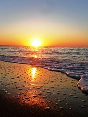 Tranquility in the morning sun (Ramona R***) Tags: morning light sea summer sky sun mer seascape reflection luz sol praia nature water sunrise landscape dawn soleil mar seaside sand agua aqua eau shine alba horizon shoreline sable wave paisaje arena amanecer ciel bulgaria shore cielo lumiere reflejo rays apa sole 1001nights sunrays paysage vague seashore plage litoral olas blacksea ceu soe spiaggia amanhecer horizonte matin lumina nisip plaja nascerdosol mattina goldensands zori cer soare rasarit peisaj leverdusoleil mareaneagra mernoire flickrdiamond rasaritdesoare zlatnipyassatsi 1001nightsmagiccity