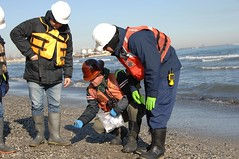 Coast Guard responds to BP oil discharge in Indiana (Coast Guard News) Tags: coastguard unitedstates scat lakemichigan bp whiting in marinesafetyunitchicago shorelineassessmenttechniquesteam