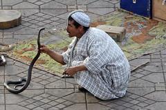 Djemaa el Fna, Marrakech (bcmng) Tags: portrait northafrica agadir marocco marrakech marokko fes meknes marrakesch djemaaelfna marokkotour maroccofaces maroccoportrait marokkorundreise