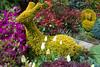 """Big Ears"" Yew topiary ""Lama"" - Taxus baccata 'Semperaurea' (Four Seasons Garden) Tags: uk england yellow marie garden four gold golden spring topiary seasons tony yew newton taxus walsall baccata fourseasonsgarden semperaurea"