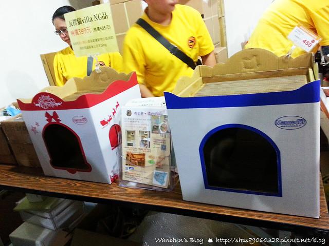 20140614華山貓咪送養_104425