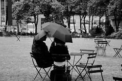 Comienza a llover (Juliproducciones) Tags: plaza parque lluvia pareja paraguas par
