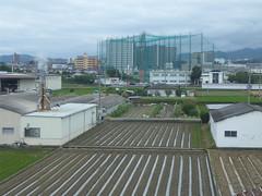 Golf cage (seikinsou) Tags: japan spring haruka train jr railway kix kansai airport shinosaka hineno field golf cage