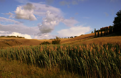 On_the_Way_To_Home (Massimo Valiani) Tags: life street trees summer sky italy moon house home grass clouds way landscape corn suspension time blu sony hill breath traveller tuscany fields massimo a350 valiani